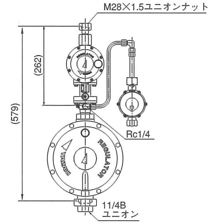6-1-6-rmlbf-50hl
